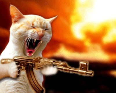 chat-gun-fire.jpg